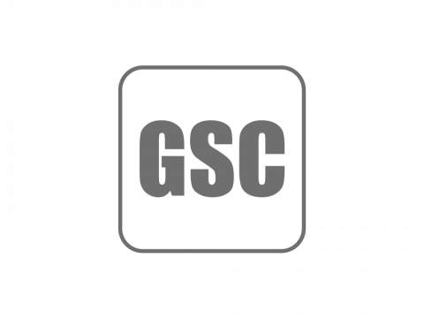 Geometrical Stability Control (GSC)